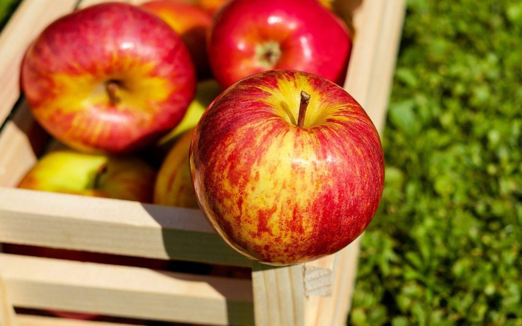 Jabuka – simbol zdravlja, mladosti i lijepote